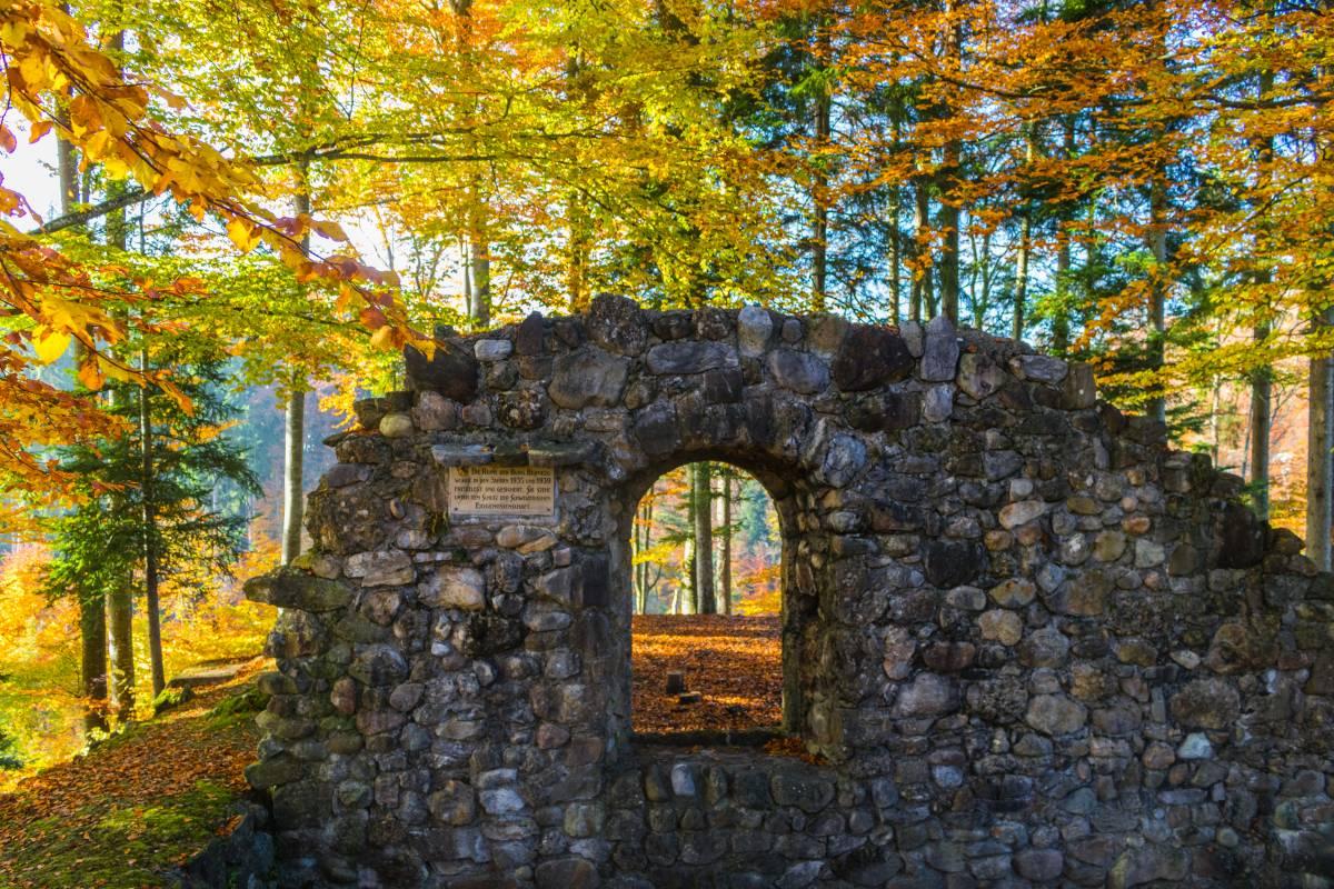 Ruine Bernegg bei Hinwil