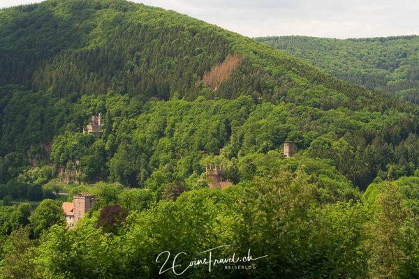 Blick auf die vier Burgen von Neckarsteinach
