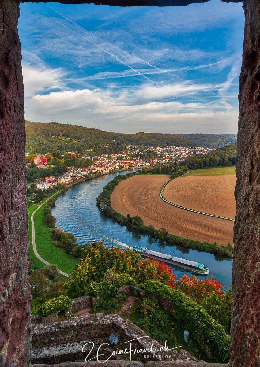 Blick vom Schwalbennest Neckarsteinach