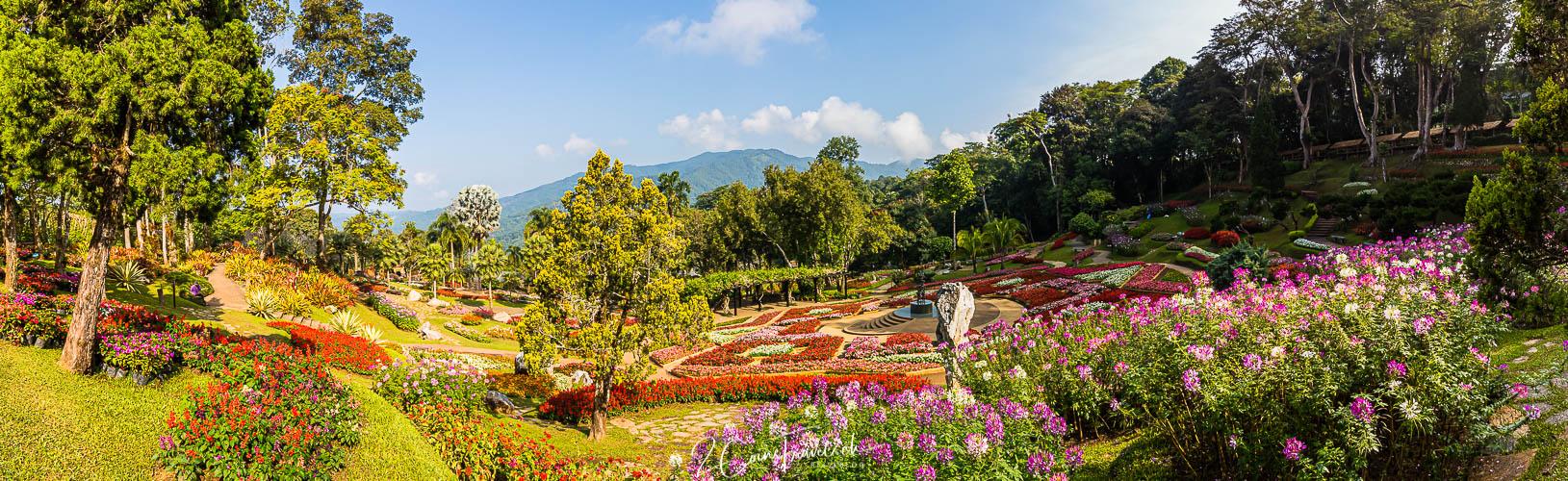 Doi Tung Garden Chiang Rai Panorama
