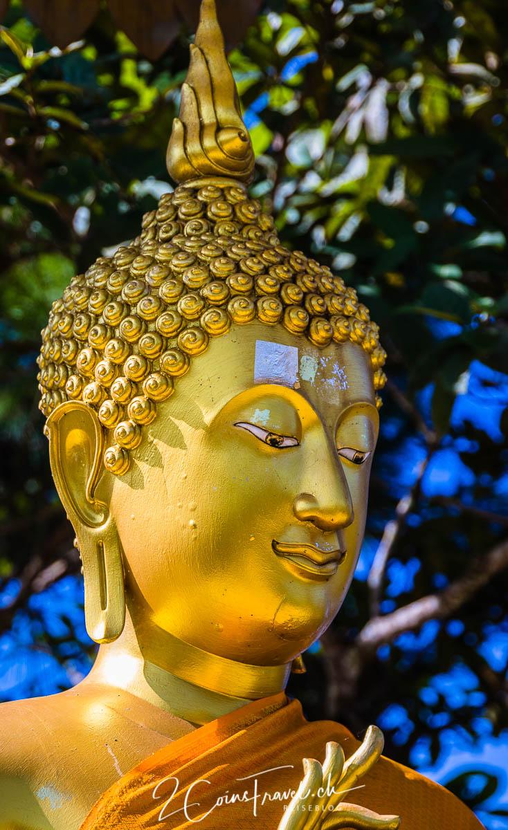 Buddha Doi Pha Dang