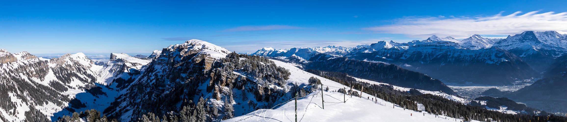 Panorama Niederhorn