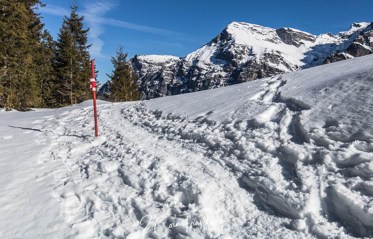 Schneeschuhweg