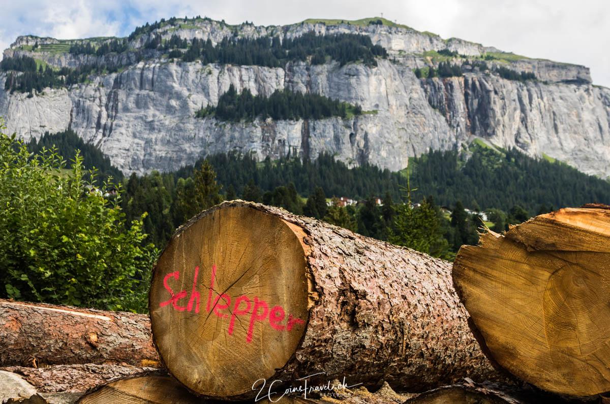 Holzstapel beim Flims