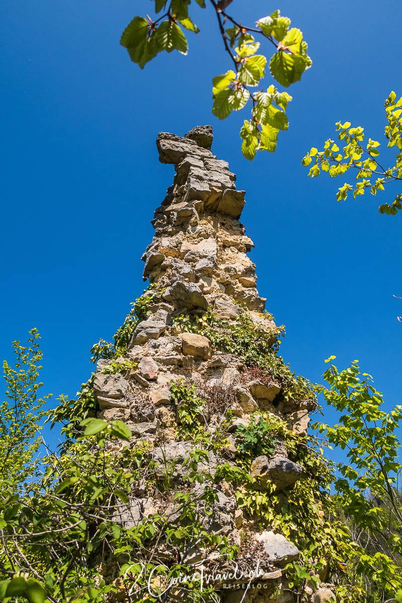 Burgreste oberhalb Saint Ursanne
