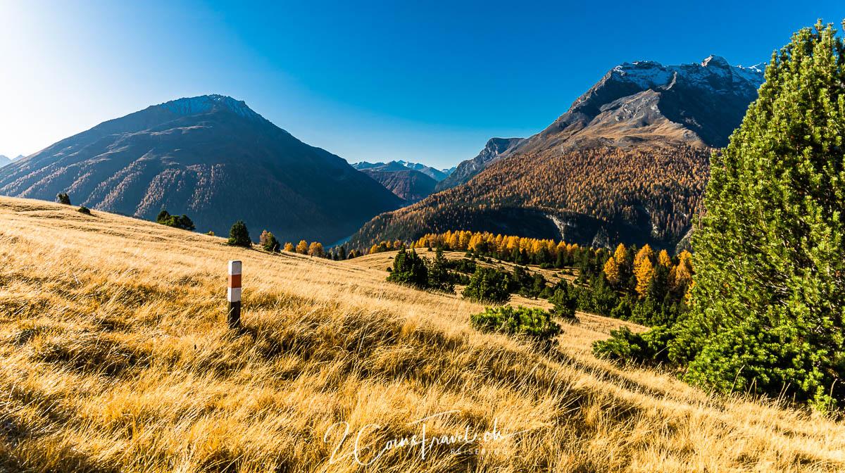 Herbstfarben Alp la Schera