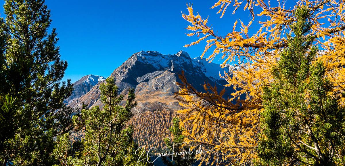 Herbstfarben im Nationalpark