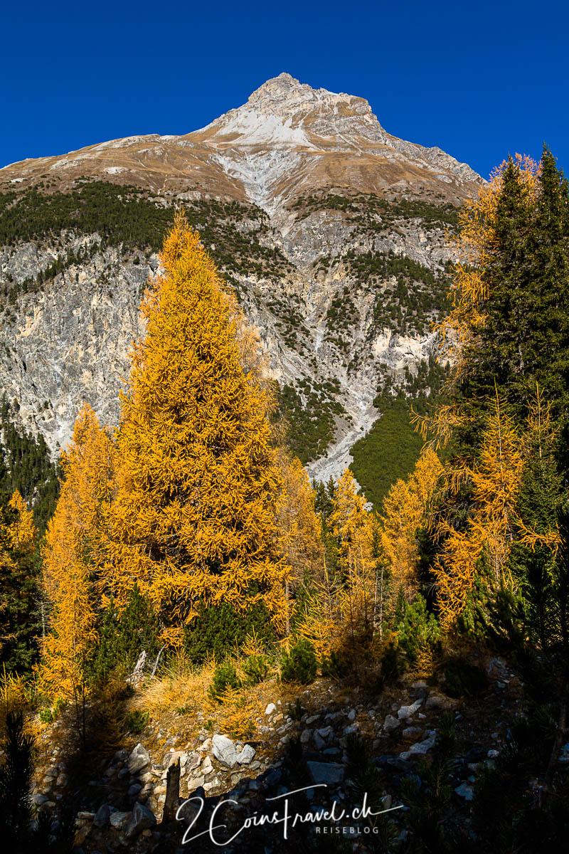 Herbstfarben im Engadin