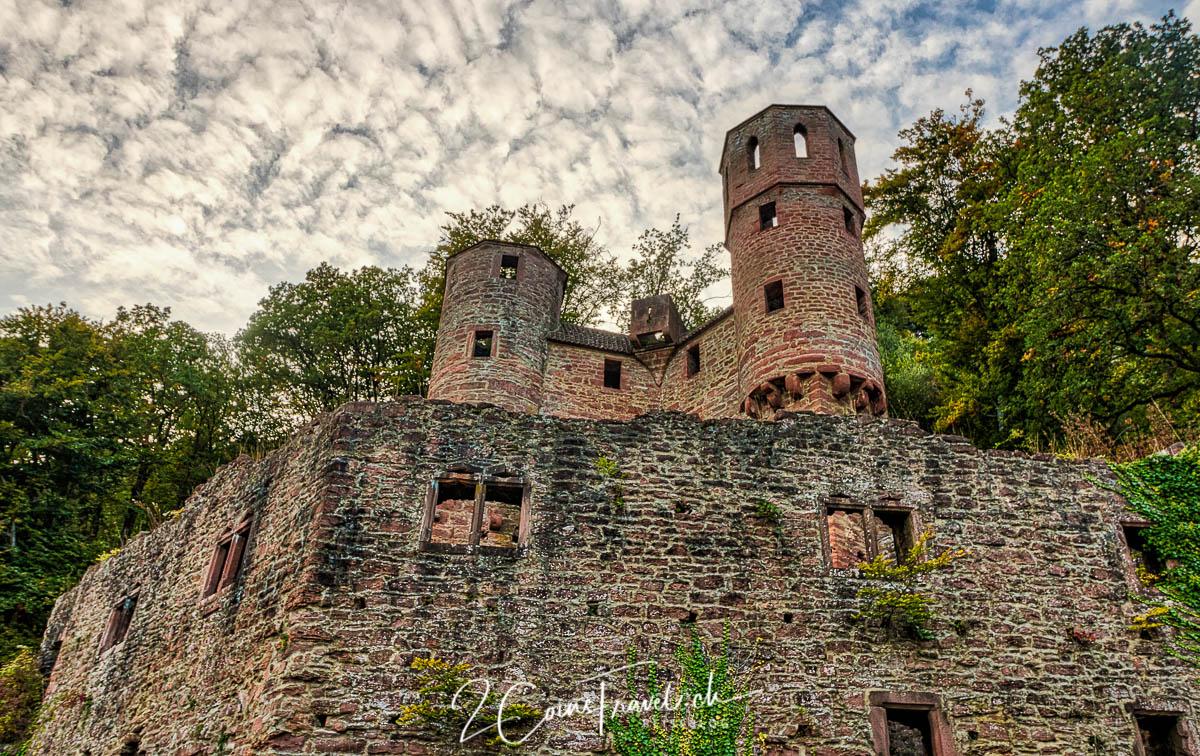 Neckarsteinach Burg