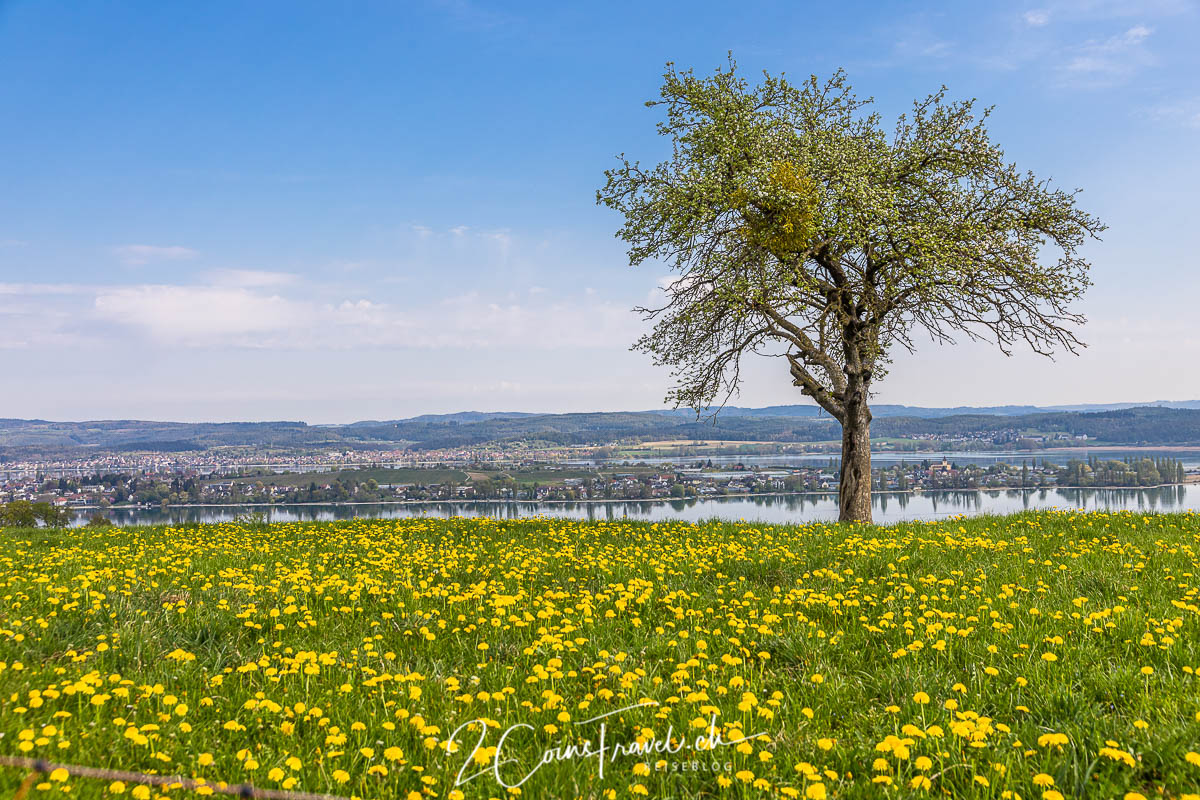 Aussichtspunkt Salenstein