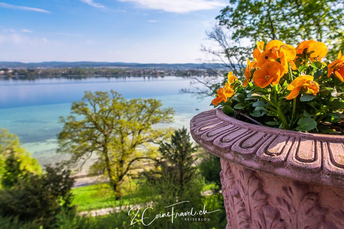 Blumen und Aussicht