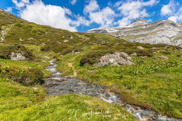 Bach bei Alp Nova Sura