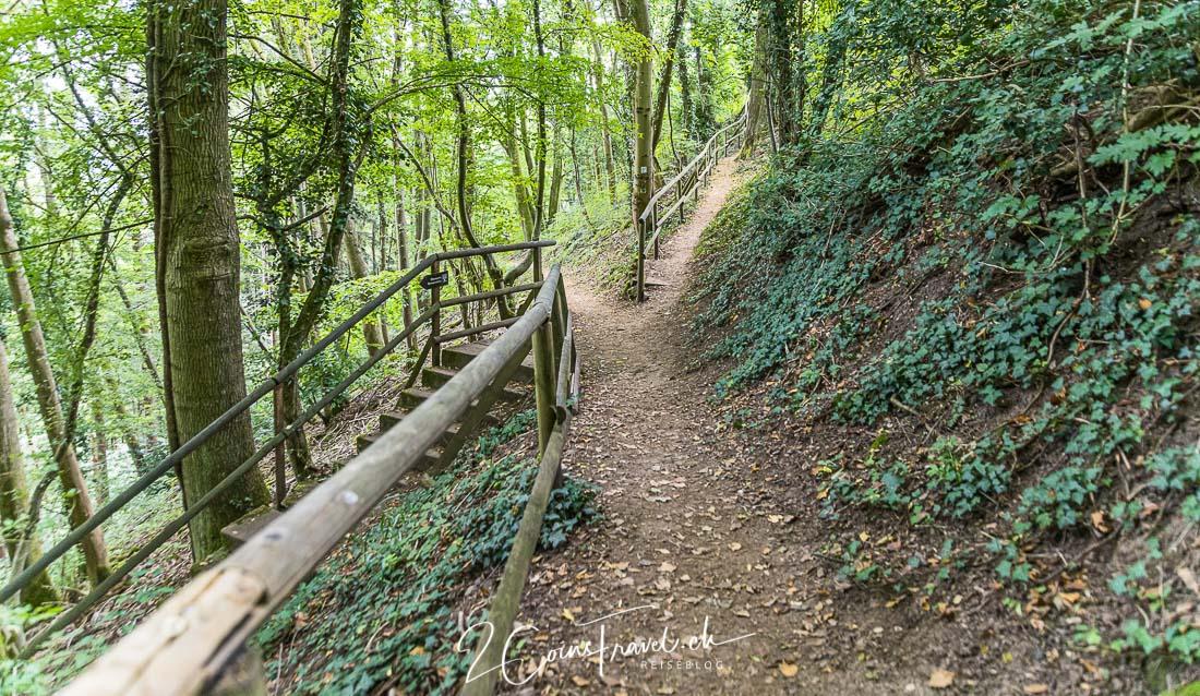 Waldweg Burgstollen