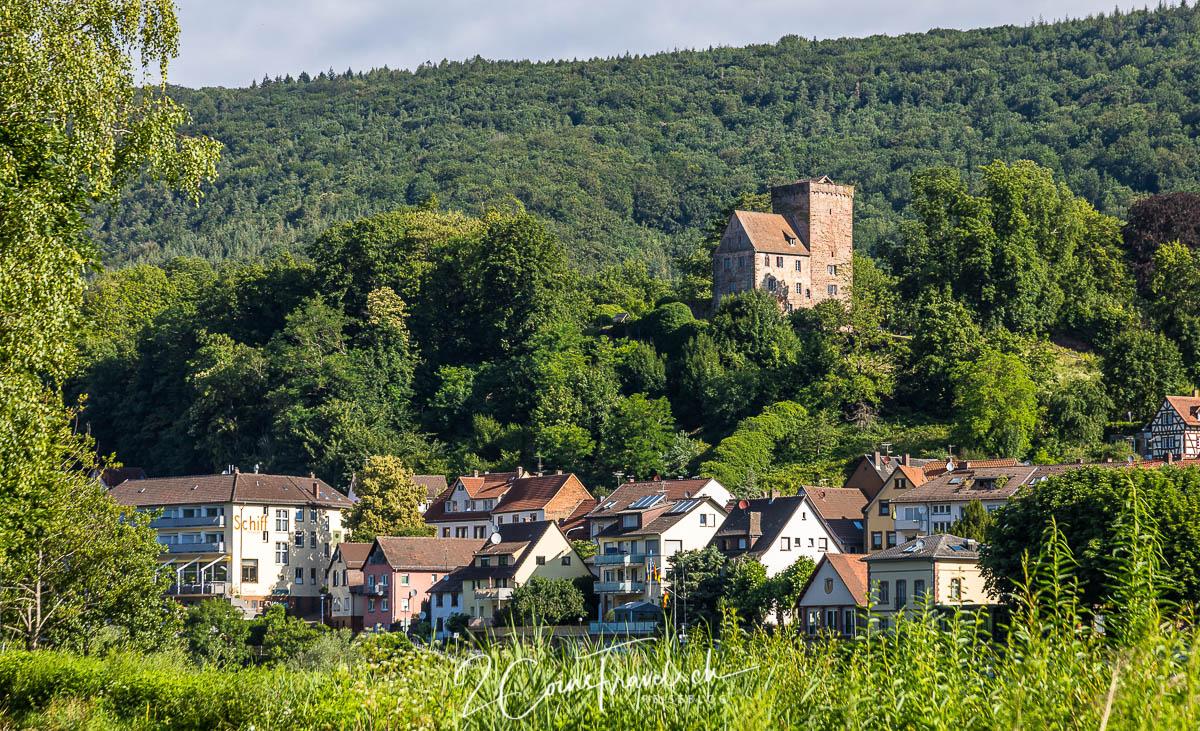 Vorderburg Neckarsteinach