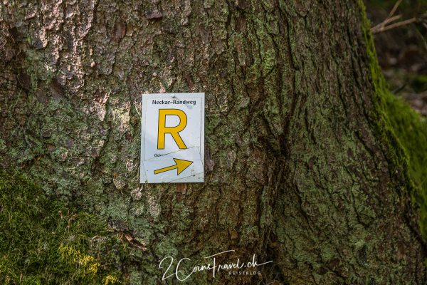 Rhein-Neckar-Weg Symbol