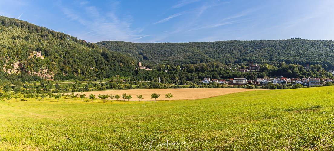 Panorama Vierburgen Neckarsteinach