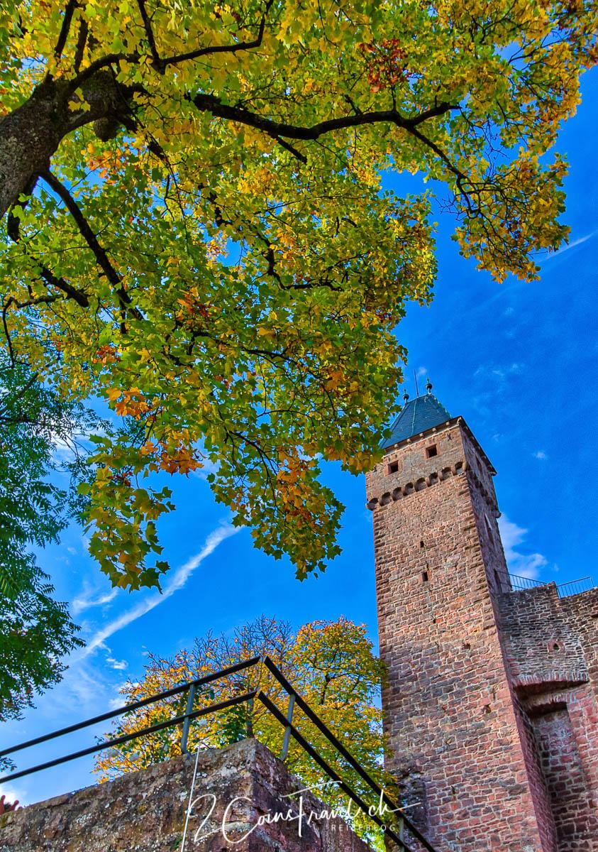 Turm Burg Hirschhorn