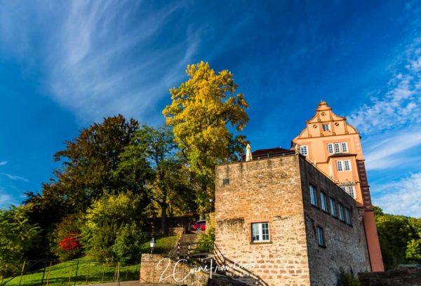 Gebäude Schloss Hirschhorn