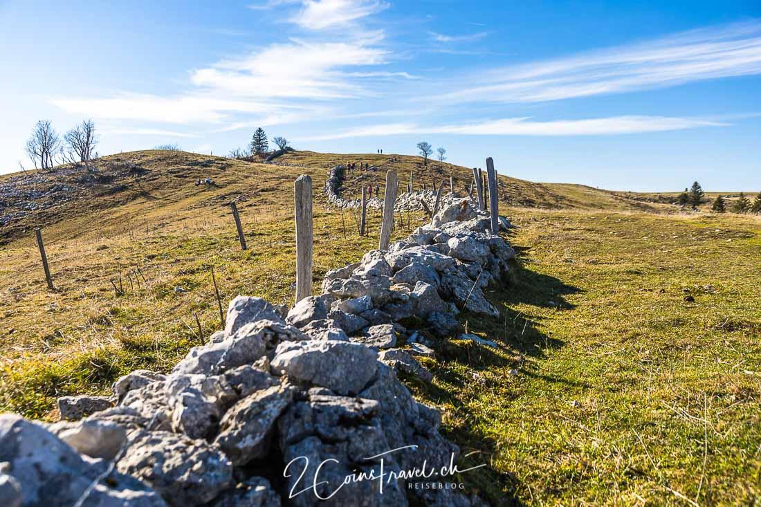 Steinmauer Weide