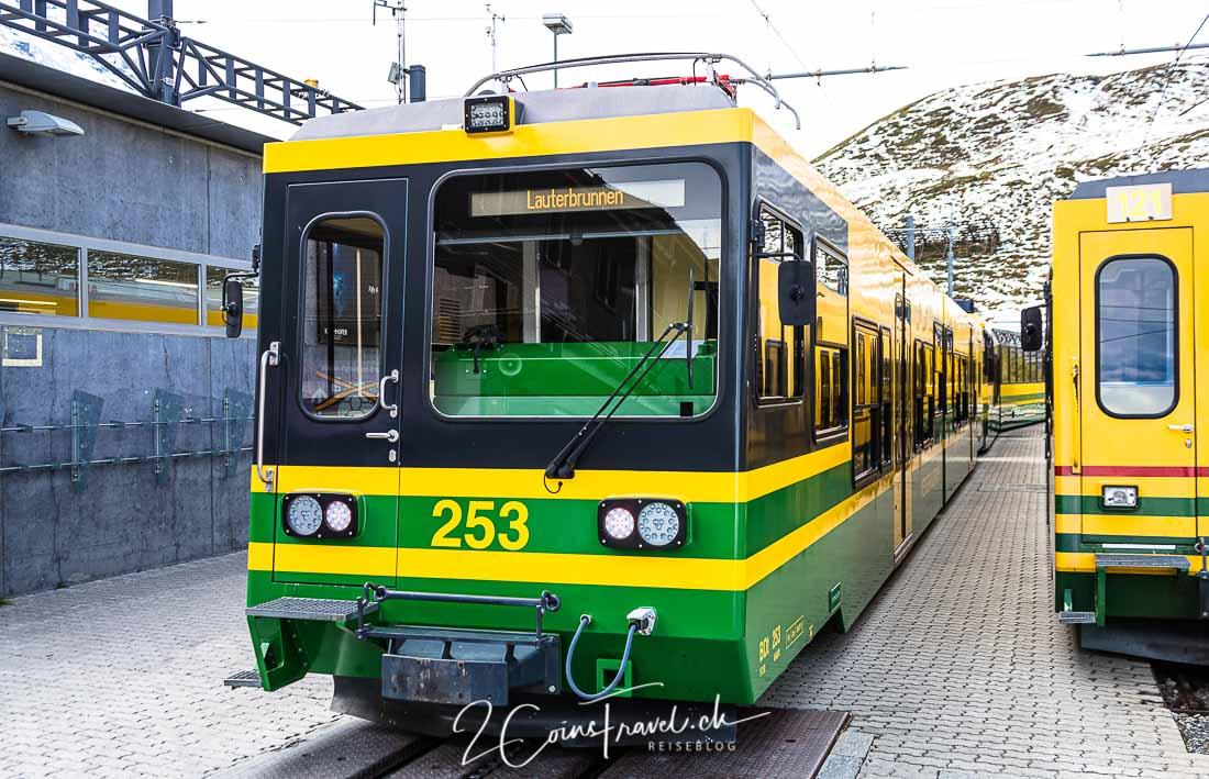 Zug Kleine Scheidegg
