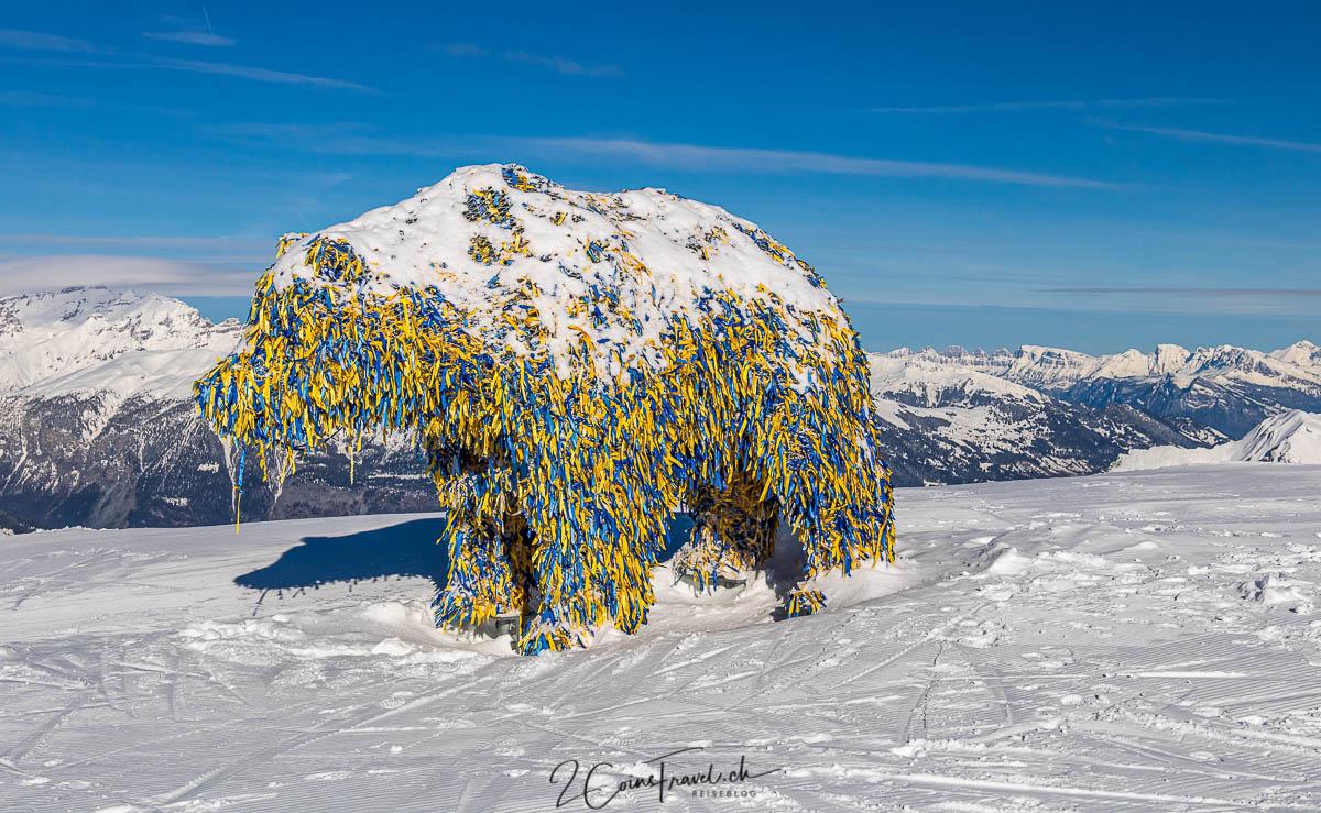 Bär Weisshorn Arosa