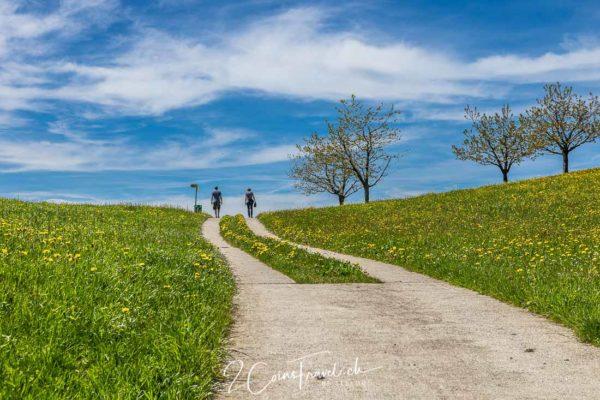 Wanderweg nach Menzingen