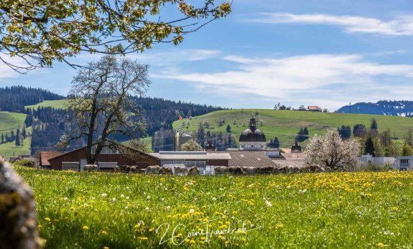 Kloster Menzingen