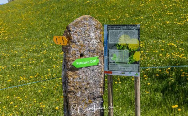 Dorfrundweg Menzingen