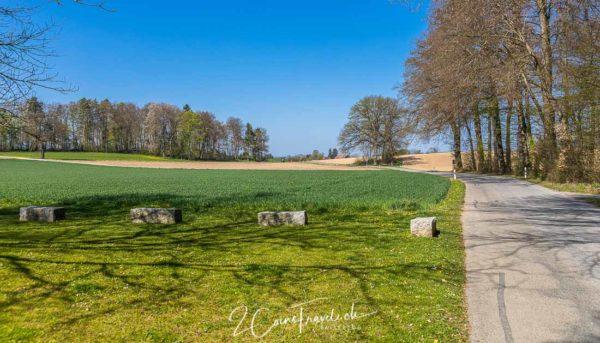 Wangnerwald Weg