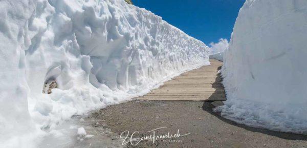 Schnee am Wegesrand