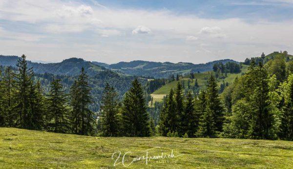 Ausblick Zürcher Oberland
