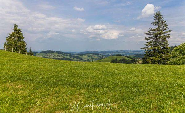 Blick Toggenburg