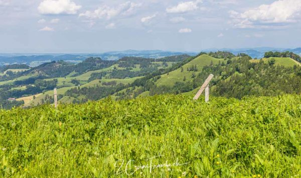 Blick ins Toggenburg