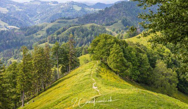 Wanderweg Schnebelhorn