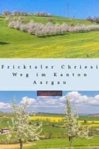 Pinterest Chriesiweg