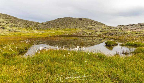 Kleiner See Hjallanes